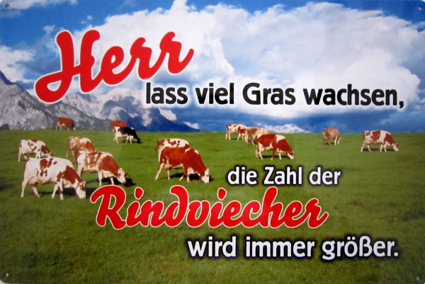 Blechschild Herr lass Grass wachsen Rindviehcher