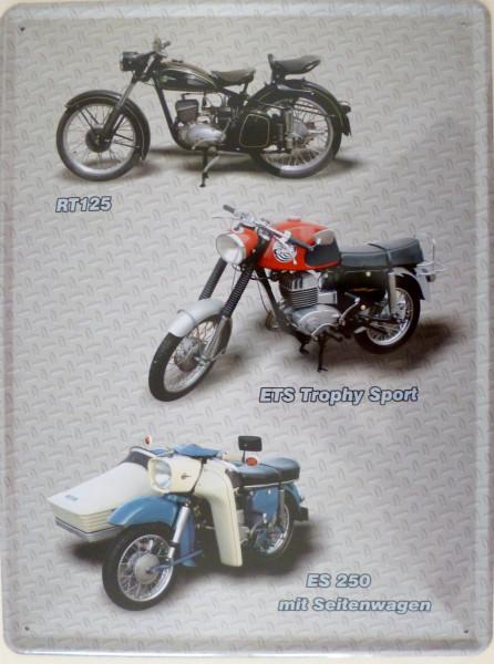 Blechschild 30x40cm 3er Motorrad grau RT125 ETS Tr. Sport ES250 Seitenwagen