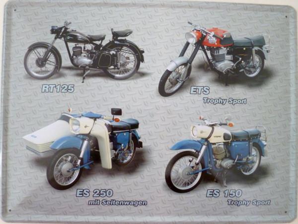 Blechschild 30x40cm Motorrad TR125 ETS ES250 ES150