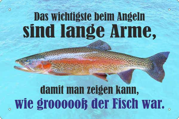 Blechschild Das wichtigste beim angeln sind die langen Arme