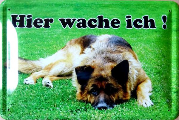 Blechschild Hier wache ich Schäferhund liegend quer grün