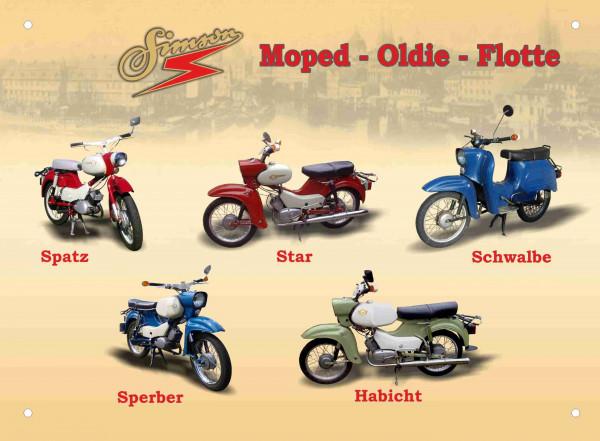 Blechschild 30x40cm 5er Moped-Oldie-Flotte Spatz Star Schwalbe blau Sperber Habicht