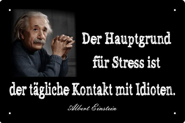 Blechschild Einstein - der Hauptgrund für Stress